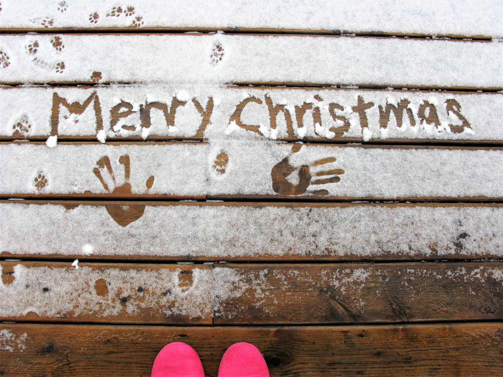 MERRY CHRISTMAS TORONTO